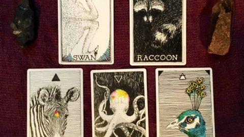 Animales en las Cartas del Tarot